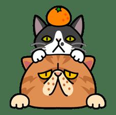 Meow Me 3 sticker #12908
