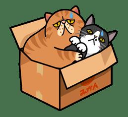 Meow Me 3 sticker #12910