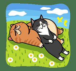 Meow Me 3 sticker #12917