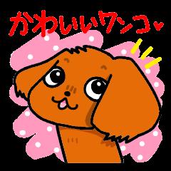 かわいいワンコ♥(キャバリア・ルビー)[LINEスタンプ]