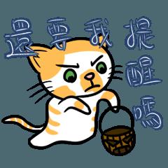 各種花色的萬聖節貓貓