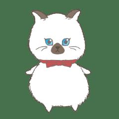 ultra cat