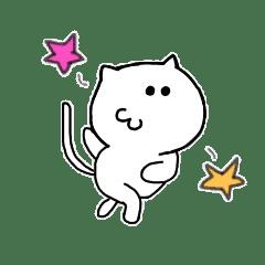 PONKICHIKUN CAT