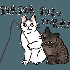 地方貓咪觀察學院 by Yycat