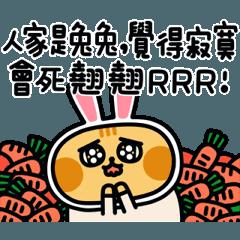 就是醬子喵-喵日常動起來!(5)