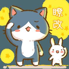 秘密貓日常14 台語金促咪