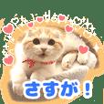 猫の「うなちゃん」 | LINE STORE