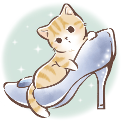 日常好用♡大人可愛淑女貓